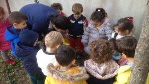 Miniklerden Ata'ya 600 çınar