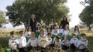 Öğrenciler zeytin hasadı yaptı