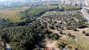 Ege'ye 'millet bahçesi'
