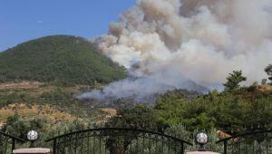İzmir'in orman yangını karnesi