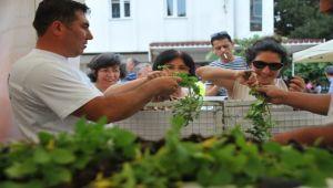 Seferihisar'da 9. Tohum Takas Şenliği Başlıyor