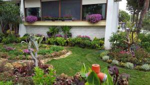 İşte Karşıyaka'nın en güzel balkon ve bahçeleri