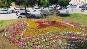 Narlıdere yaz çiçekleriyle süslendi