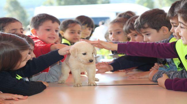 Hayvan hakları için Karabağlar'da kermes düzenlendi