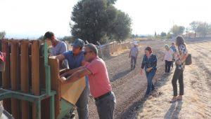 Karaburun'da tarıma istihdam