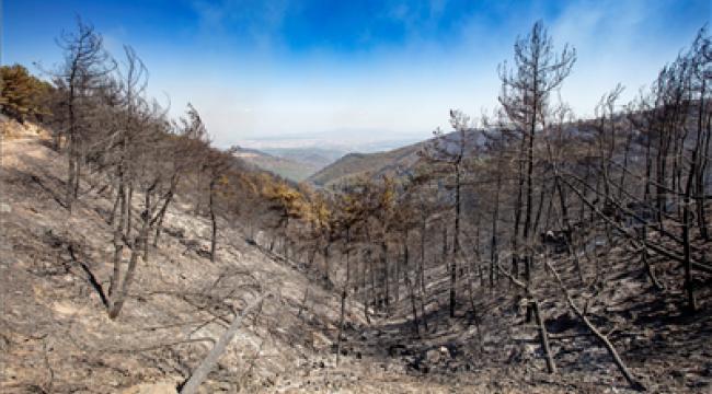 Valilikten orman yangınlarıyla ilgili beklenen izin geldi