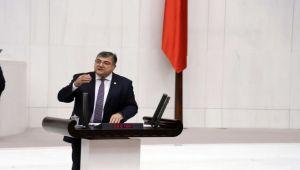 Karaburun'daki balık çiftliklerini Meclis gündemine taşıdı