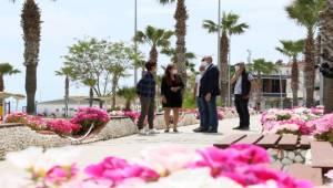 Aydın, Büyükşehir'le Bahara Rengarenk Giriyor