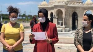 AK Kadın İzmir'den, sokak hayvanları için çağrı