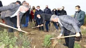 Güzelbahçe'de 500 Fıstık Çamı Toprakla Buluştu