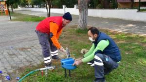 Narlıdere'de can dostlar için su kabı